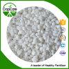 Inorqanic Nitrate Fertilizer Ammonium Sulphate
