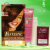 2014 Hot Sale Ammonia Colorful Hair Care Hair Color Cream