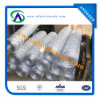 Hexagonal Shape Wire Mesh/Hexagoanl Wire Netting
