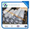 Hexagonal Shape Wire Mesh/Hexagoanl Wire Netting