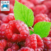 100% Natural Raspberry Plant Extract