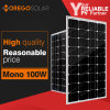 Morego PV Solar Panel / Module 100W Mono for Home Lighting