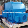 Cement Mill Ball Mill Use Yrkk High Voltage Slip Ring Motor
