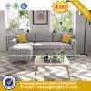High Quality Leisure Plastic Chairs (HX-8NR2283)