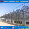 Factory Price Glass Greenhouse for Growing Cucumber