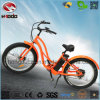 500W Motor Electric Beach Bike with Alloy Frame