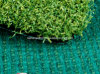 Artificial/Synthetic Grass for Golf/Mini Golf (TCH19)