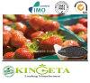 China Fertilizer Manufacturer Supply Fulvic Acid Organic Fertilizer