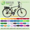 36V 250W High Speed Mountain E-Bike (TDB03Z)