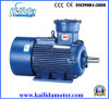 20 HP Three Phase Explosion-Proof Motor with Atex Certificate