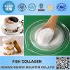 Food Grade Halal Hydrolyzed Collagen