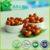 Promote Digest and Absorption Food Grade Beta Carotene Capsule