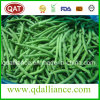 Frozen Whole Green Beans with FDA, Brc Certificate