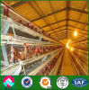 Construction Design Steel Structure Prefab Chicken House