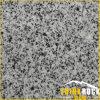 G614 Grey Granite Paving Stone for Wall Tile/ Floor Tile/ Road Border