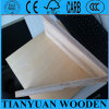 Low Price 5mm Birch Commercial Plywood