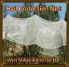 40G/M2-80G/M2 PE Plastic Anti-Hail Net Hail Protection Nettting