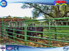 Painting Standard Loop Foot Cattle Corral Panel (FLM-CP-022)