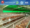 Poultry Farm Egg Layer Cage Equipment for Kenya Farm
