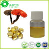 Ganoderma Lucidum Reishi Oil Extract Organic Lingzhi Spore Oil Capsule