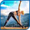 Women Fashionable Mesh Splicing Sports Yoga Pants