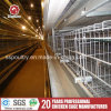 Poultry Farm Equipment Wire Mesh Battery Egg Layer Cages
