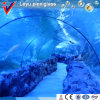 Transparent Plastic Panels for Aquarium Tunnel