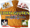 Chicken Feed Corn Gluten Meal with Protein 60%Min