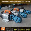 Yonjou Diesel Transfer Pump