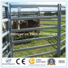Fence Used Horse Panel/Fence Panel/Cattle Panel