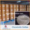 Bovine Chondroitin Sulfate Sodium (bovine)