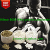 80% Natural Whey Protein Concentrate