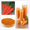 Gap Based Certified Carrot Extract Powder