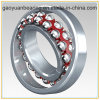 China Hot-Sale High Precision Self-Aligning Ball Ceramic Bearing (1301)