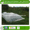 Nonwoven Cover Crops for Agriculture