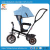 New Design Children 3 Wheel Tricycle Outdoor Carrier