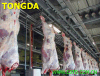 Cattle Slaughter Machine