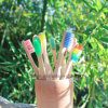 Free Sample OEM 100% Biodegradable Eco Bamboo Toothbrush