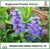 100% Natural China Origin Shiny Bugleweed Powder Extract 10: 1, 20: 1