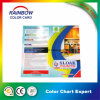 Customized Folded Printing Color Catalog for Paint