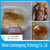 Trenbolon Acetate Bulking Cycle Steroids CAS 10161-34-9 for Bodybuilder