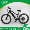 Fat Tyre Two Wheels Motor 48V 500W Beach E Bike