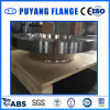 Stainless Steel Weld Neck Forged Flange (PY0020)