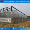 China Factory High Quality Glass Green House for Tomato