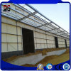 Factory Price and High Quality Light Steel Buildings on Sale