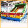 Cartoon Inflatable Standard Slide for Kid (AQ953-3)