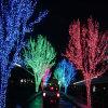 LED Christmas Fairy Light for Tree Light Decoraton