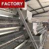 Kenya Poultry Farm House Chicken Cages with Auto Drinkers and Feeders