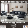 Italy Top Grain Leather Sofa for Living Room Furniture (LZ-069)