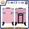 Hot Sale Ladies Beauty Trolley Case for Nali Arts (HB-6339)